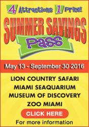 museum-summer pass-2016-SSP-175x250